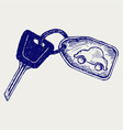 Car keys vector image
