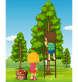 Boy and girl picking apples from the tree vector image vector image