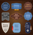 Jeans Label Icons vector image
