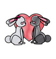 drawing couple rabbit heart lovely design vector image