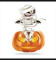 mummy sitting on halloween pumpkin vector image