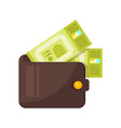 wallet with money vector image