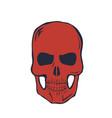 red skull on white background vector image
