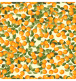 seamless oranges vector image