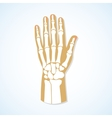 Flat design of hand and skeleton vector image