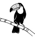 Toucan bird head for t-shirt vector image