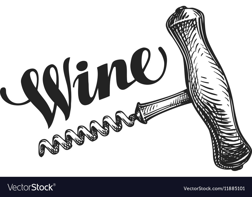 Wine corkscrew sketch vector