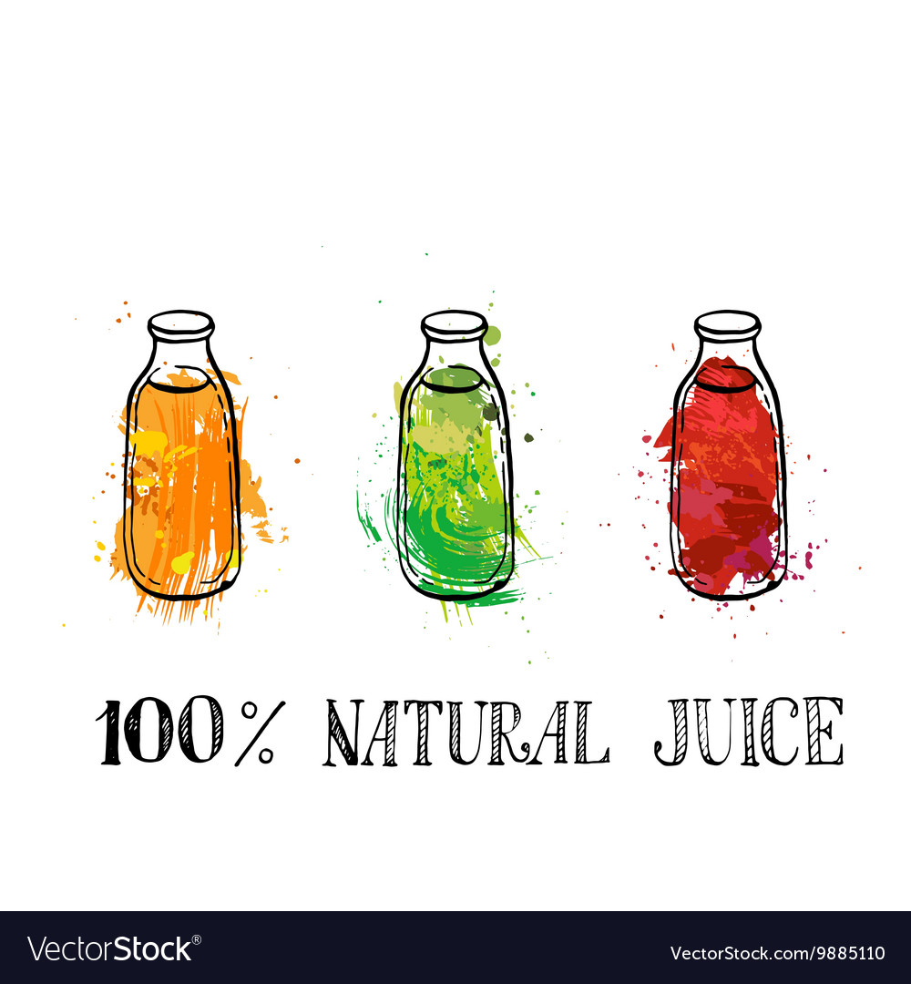 Set of bootles with fruit juice vector