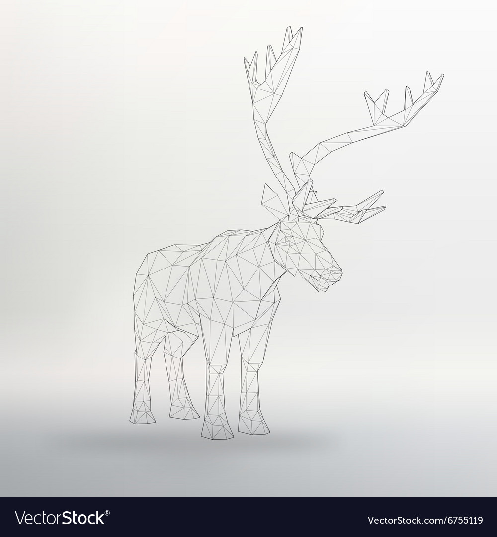 Big buck the structural grid vector