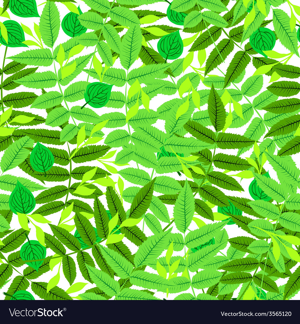 Floral pattern with leaves and foliage vector
