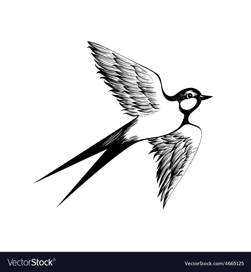 Hand drawn swallow doodle shading style engraving vector