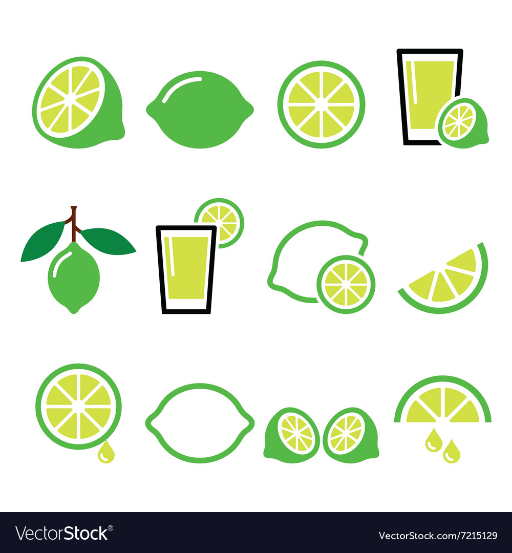 Lime  food icons set vector