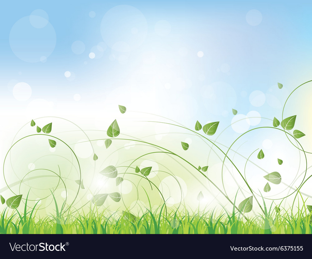 Floral spring background with swirls and flowers vector
