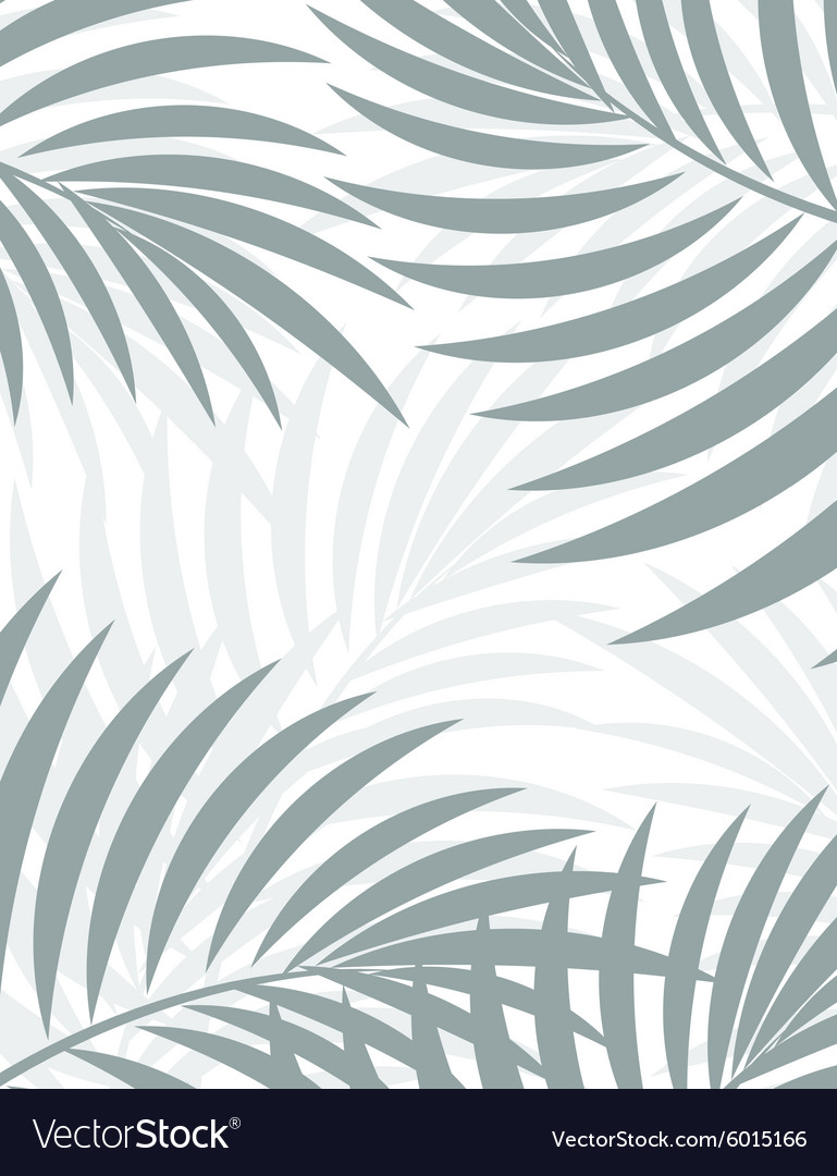 Exotic background with palm leaves for design in vector