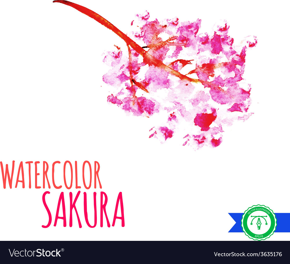 Abstract watercolor sakura branch vector