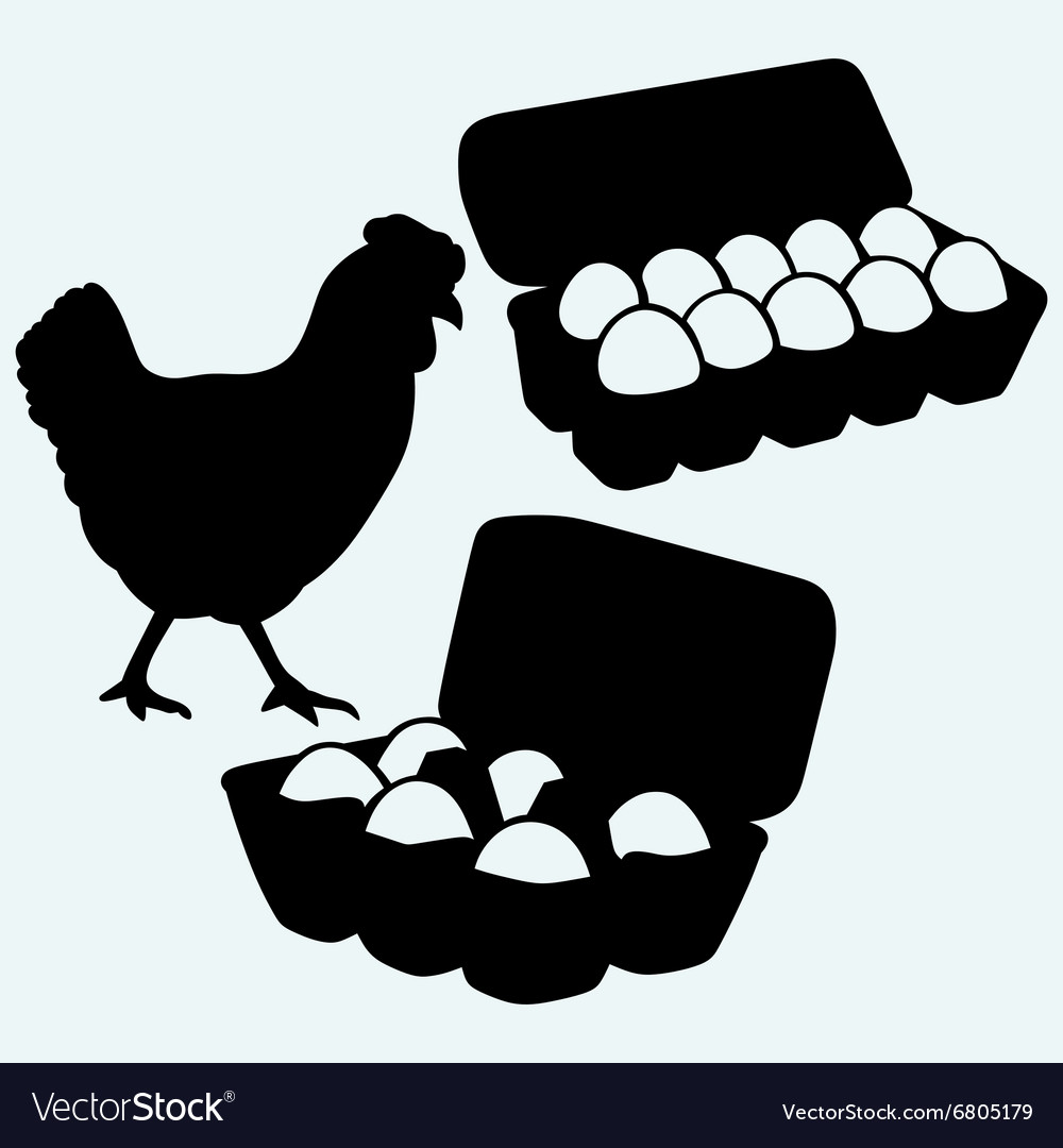 Eggs in a carton package and chicken vector