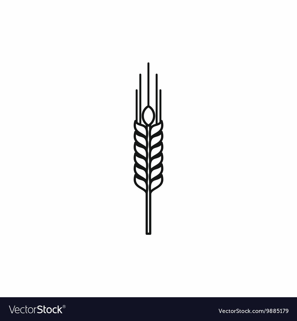 Stalk of ripe barley icon outline style vector