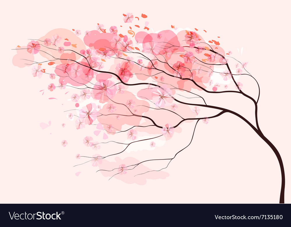 Sakura branch spring floral background vector