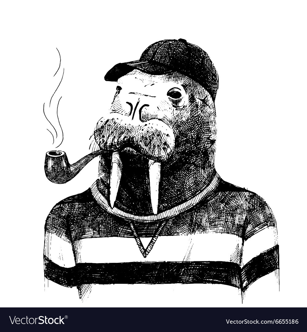 Dressed up walrus in hipster style vector