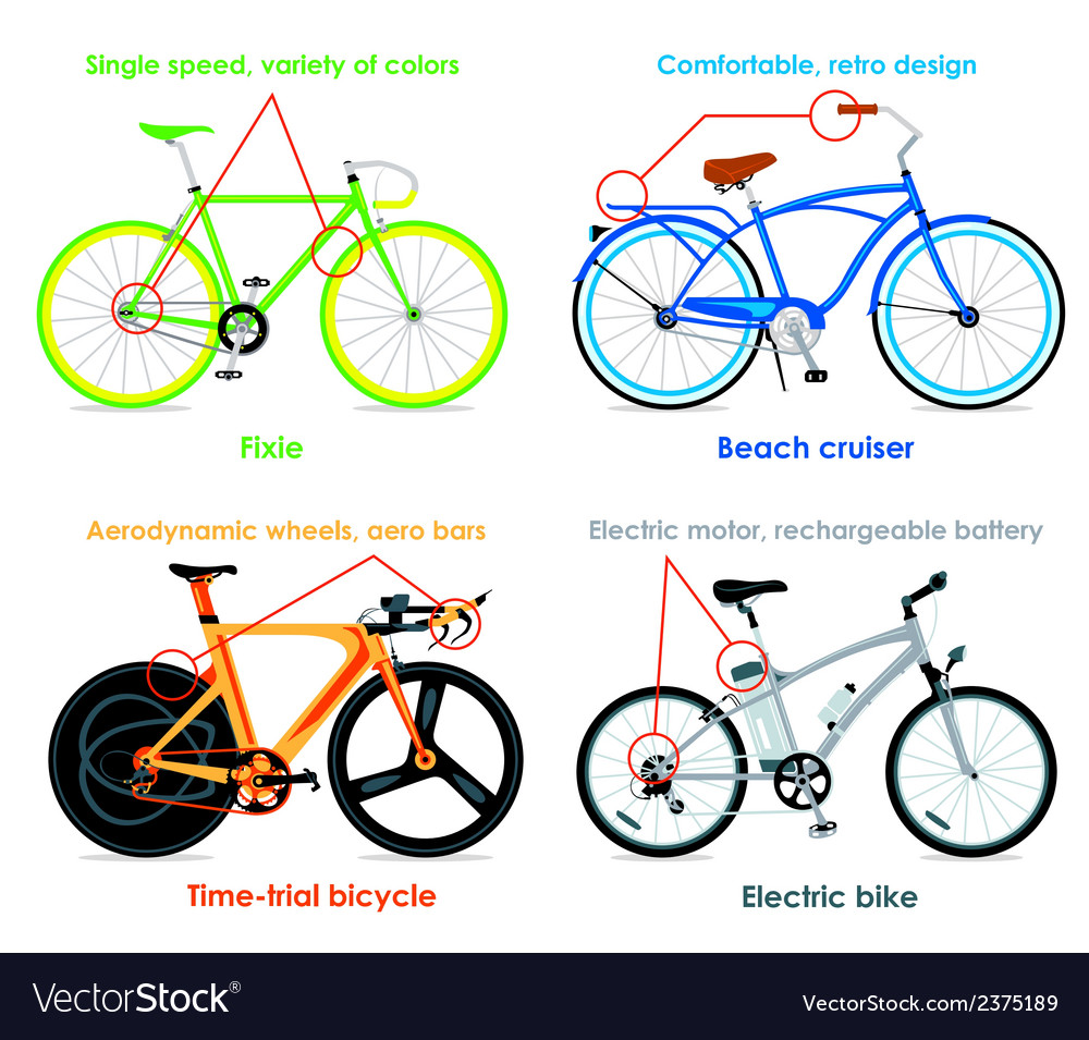 Bicycle types set ii vector