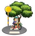 A boy biking at the road vector image