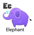 Alphabet E with elephant vector image vector image