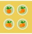 Design Stickers with Juicy Orange vector image