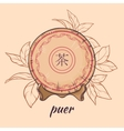 puer tea on brown background vector image