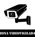 Surveillance camera vector image