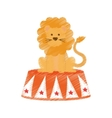 Circus lion cartoon vector image