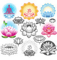 Set of lotuses and esoteric symbols vector image