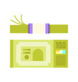 flat style of a bundle of money vector image