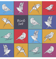 Set of hand drawn birds vector image