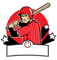baseball player ready to hit vector image