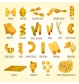 Italian pasta poster of assortment macaroni vector image