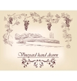hand drawn label vineyards vector image vector image