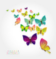 colorful butterfly design vector image