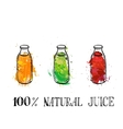 set of bootles with fruit juice vector image