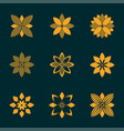 set of ornamental emblem flowers symbol vector image