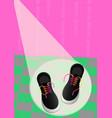 vans shoes vector image