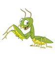 cute cartoon mantis vector image