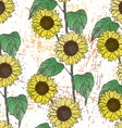 Ink hand drawn sunflowers seamless pattern vector image