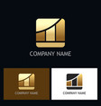 Business finance gold chart logo vector image