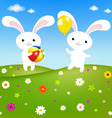rabbits and field vector image