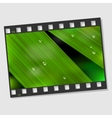 Film frame with macro leaf vector image vector image