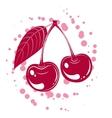 cherrys vector image