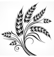 Stylized ears of wheat in vector image