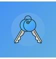 Door keys blue sign vector image