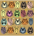 Seamless colourfull owl pattern vector image