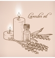 Lavender essential oil and candles vector image